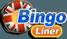 Bingo Liner UK Standard Logo (280x210)