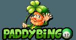 Paddy Bingo Standard Logo (280x210)