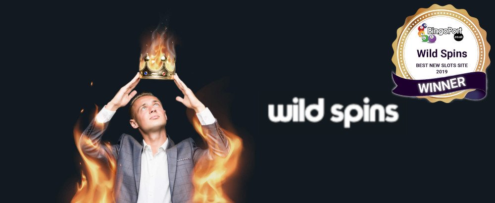 Wild Spins Page Review Header (1000x410)