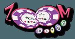 Zoom Bingo Standard Logo (280x210)